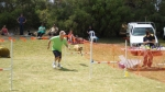Edgewater Primary School Agility Demonstration - flight