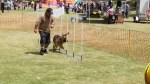Edgewater Primary School Agility Demonstration 3
